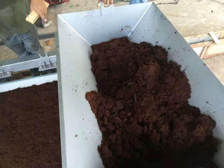菲律宾传过来的椰康脱水的好消息